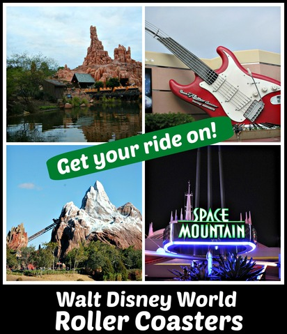 WDW Roller Coasters