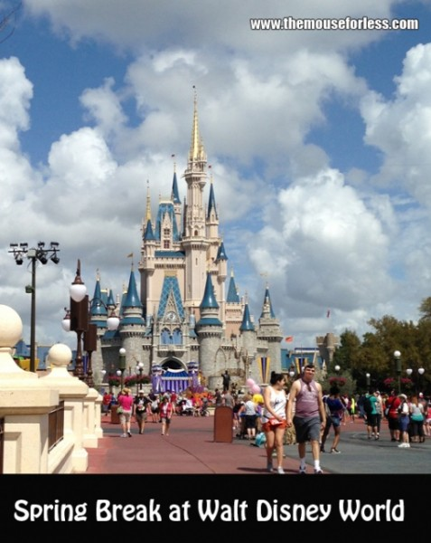 Spring Break at Walt Disney World