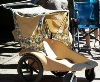 Stroller Rental at Walt Disney World - Double Stroller