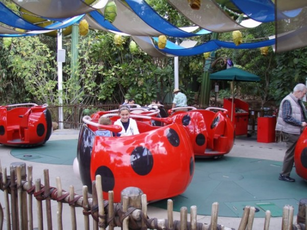 Disney California Adventure Rides & Attractions