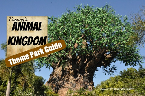 Disney's Animal Kingdom Theme Park Guide and Information #WDW