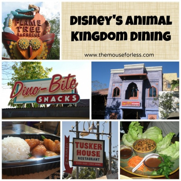Disney's Animal Kingdom Theme Park dining