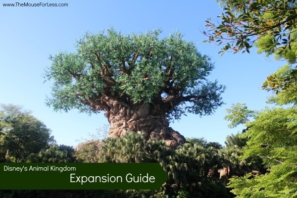 Animal Kingdom Expansion Guide