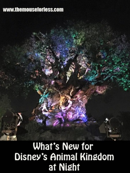 What's New for Disney's Animal Kingdom at Nigiht