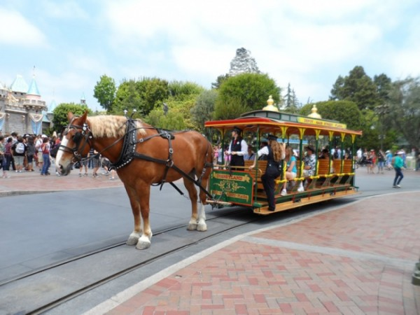 Horse Drawn Street Car