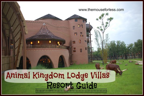 Disney's Animal Kingdom Villas Guide