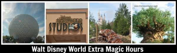 Walt Disney World Extra Magic Hours Information