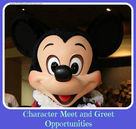 Disney Character Meet and Greet Opportunities