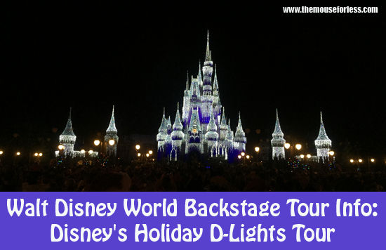 disneys-holiday-d-lights-tour