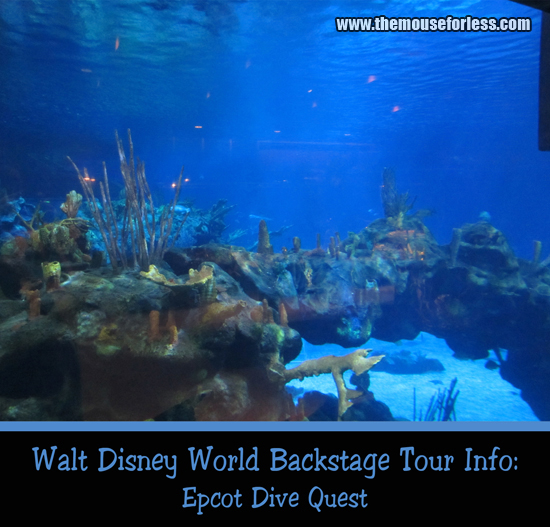 Epcot Dive Quest Experience at Walt Disney World's Epcot Theme Park