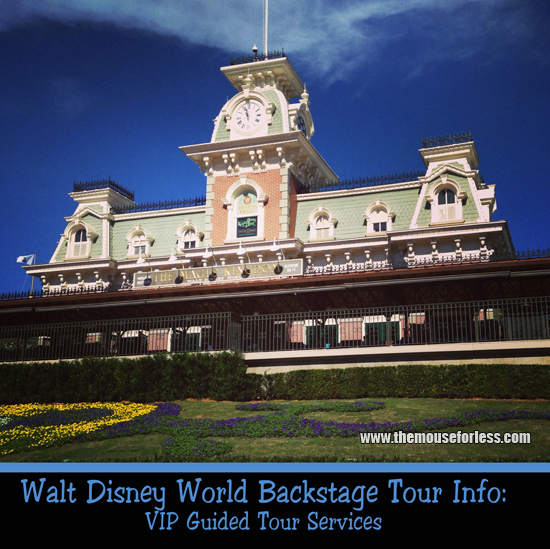 VIP Guided Tour Services