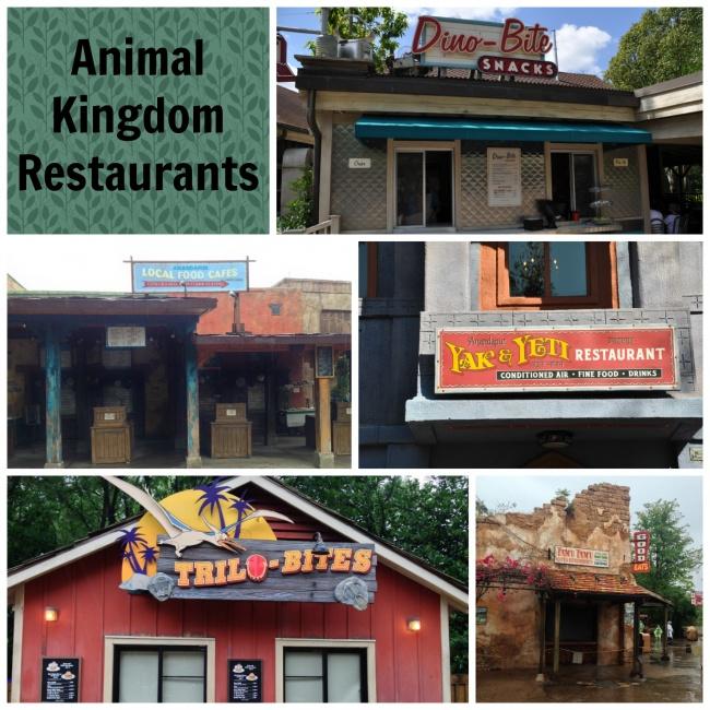 Animal Kingdom Restaurant