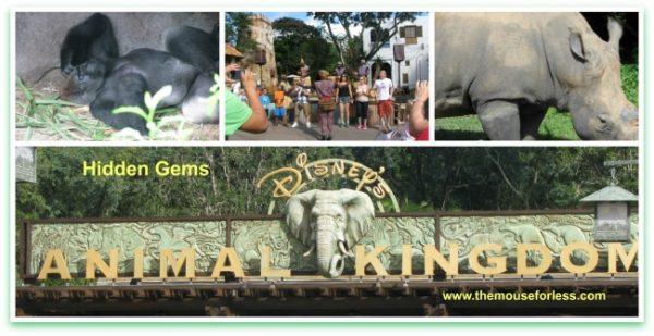 Animal Kingdom Hidden Gems