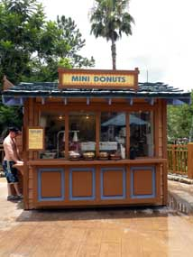 Mini Donuts at Disney's Blizzard Beach