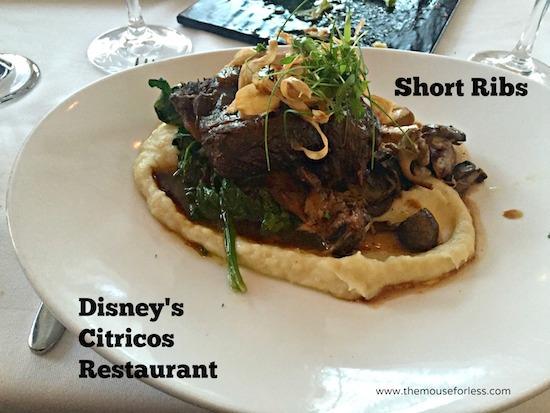 Beef Short Ribs at Citricos at Disney's Grand Floridian #DisneyDining #GrandFloridian