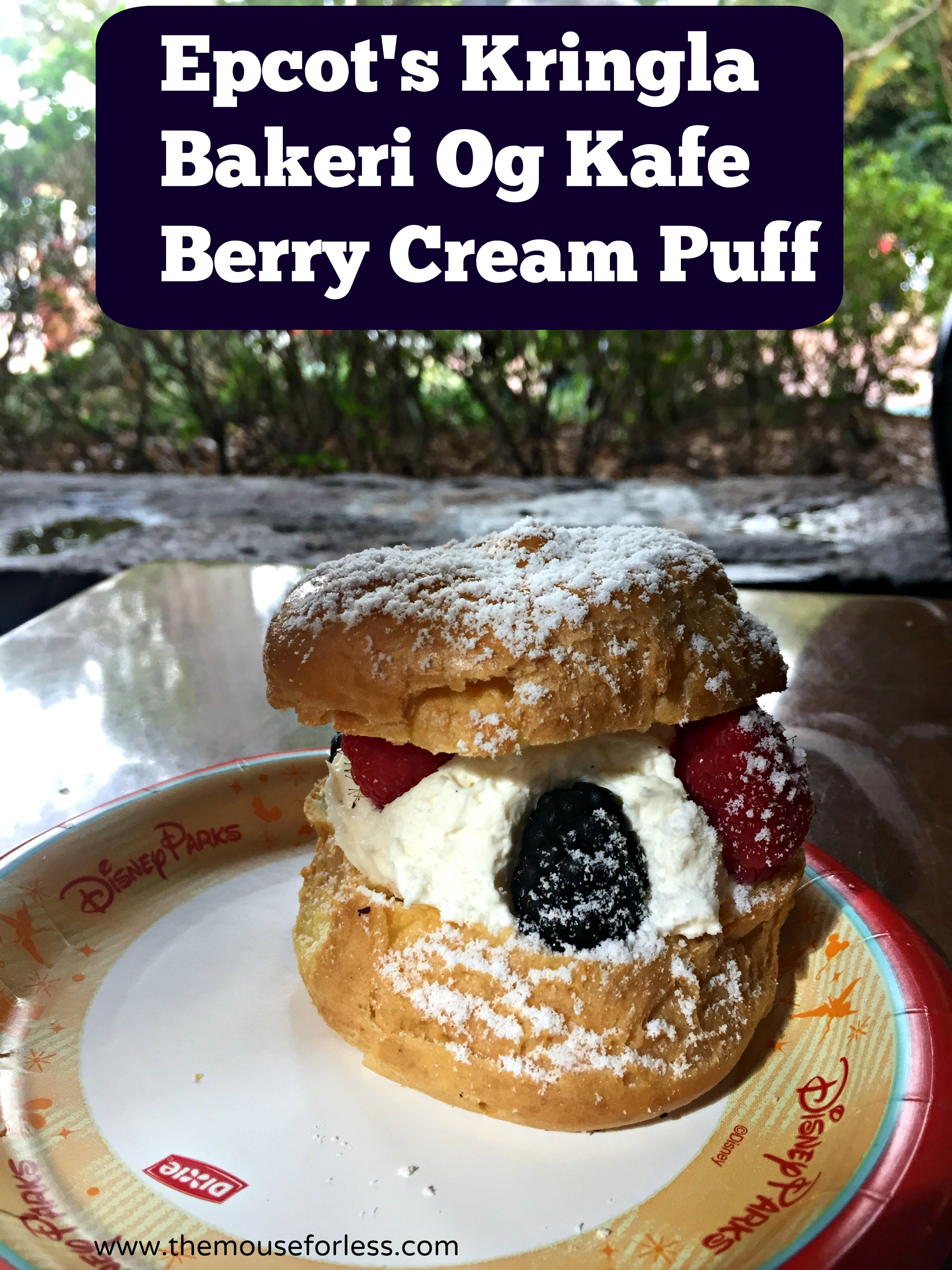 Berry Cream Puff at Kringla Bakeri Og Kafe Menu - Table Service Restaurant at Epcot #DisneyDining #WaltDisneyWorld