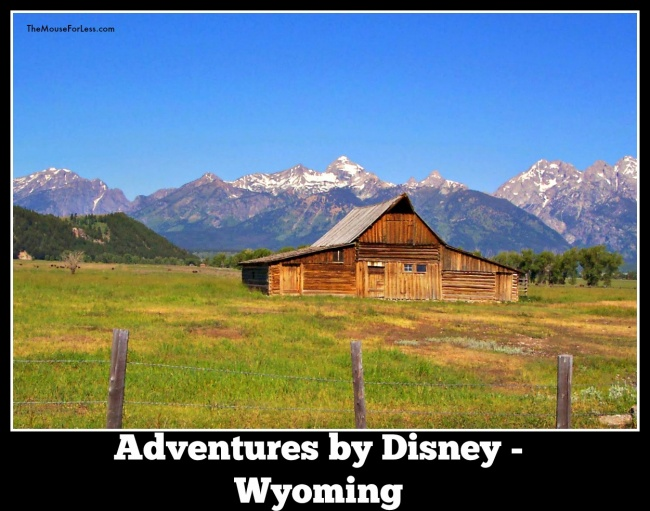 Adventures by Disney Wyoming