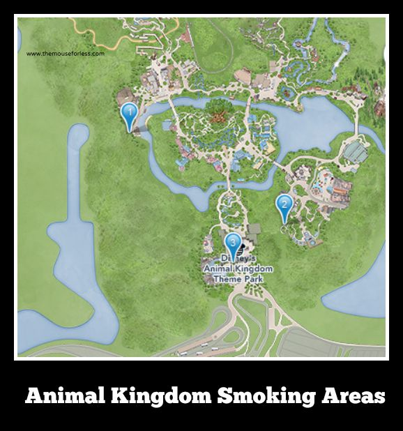 Animal Kingdom Walt Disney World Designated Smoking Areas