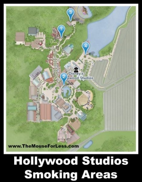 Hollywood Studios Designated Smoking Areas