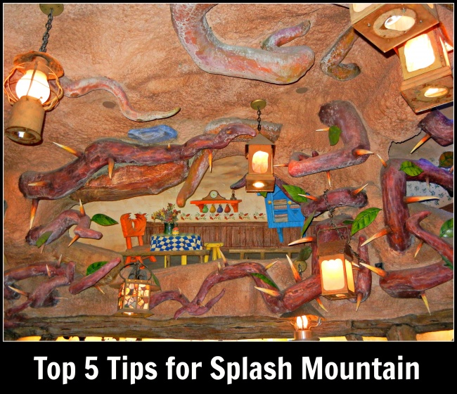 top 5 Splash Mountain