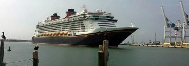 50% off Disney Cruise Line Deposit