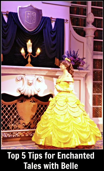 Top 5 Enchanted Tales with Belle