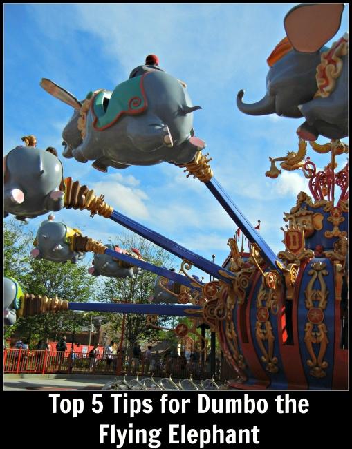 top 5 Dumbo the Flying Elephant