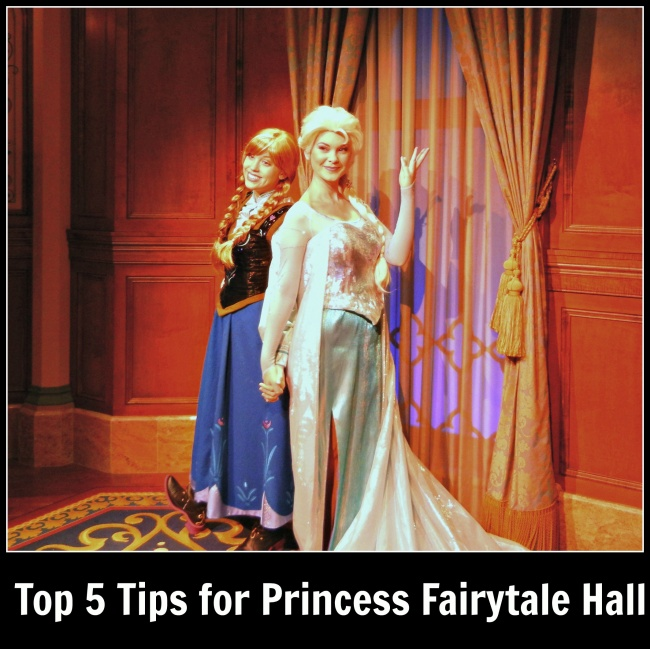 top 5 Princess Fairytale Hall
