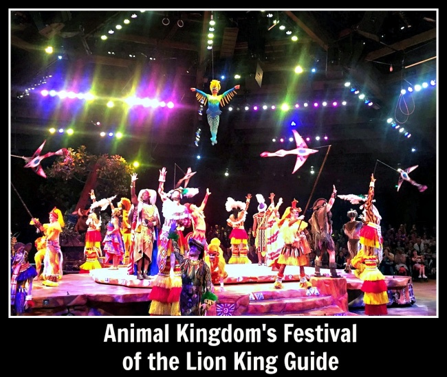 Festival of the Lion King Guide