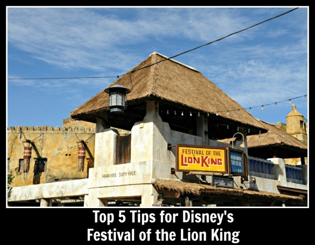 Top 5 Festival of the Lion King