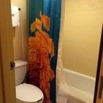 Caribbean Beach Resort Standard Room