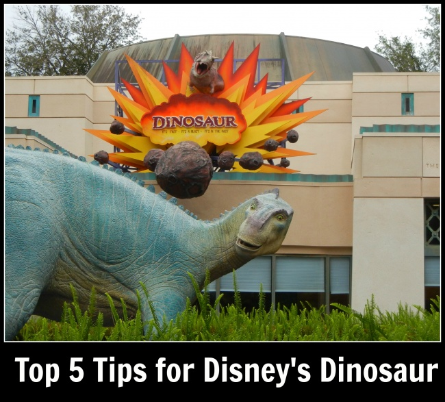 Top 5 Dinosaur Dinoland Tips