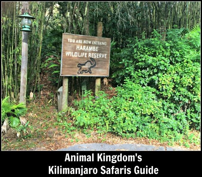 Tripadvisor Animal Kingdom africa Kilimanjaro Safari The Mouse For Less Kilimanjaro Safaris Guide Africa Animal Kingdom