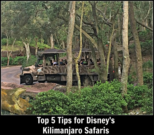 Top 5 Kilimanjaro Safari