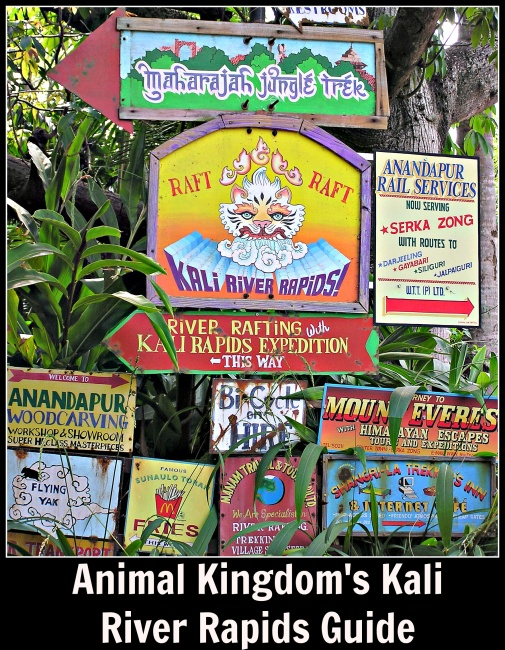 Kali River Rapids Guide
