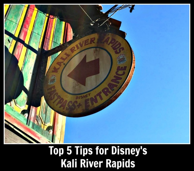 Top 5 Tips Kali River Rapids