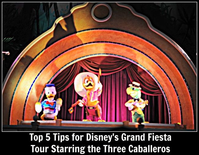 Top Five Grand Fiesta Tour