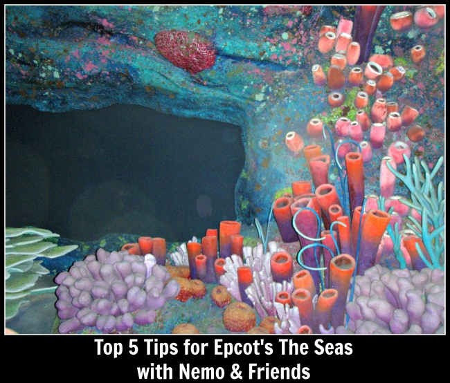 Top 5 Nemo and Friends