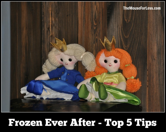 Frozen Ever After Top 5 Tips
