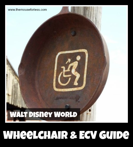 Wheelchair and ECV