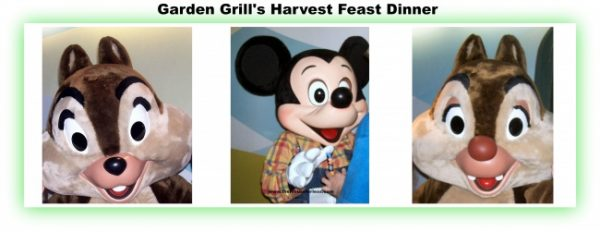 Walt Disney World Best Character Dinners