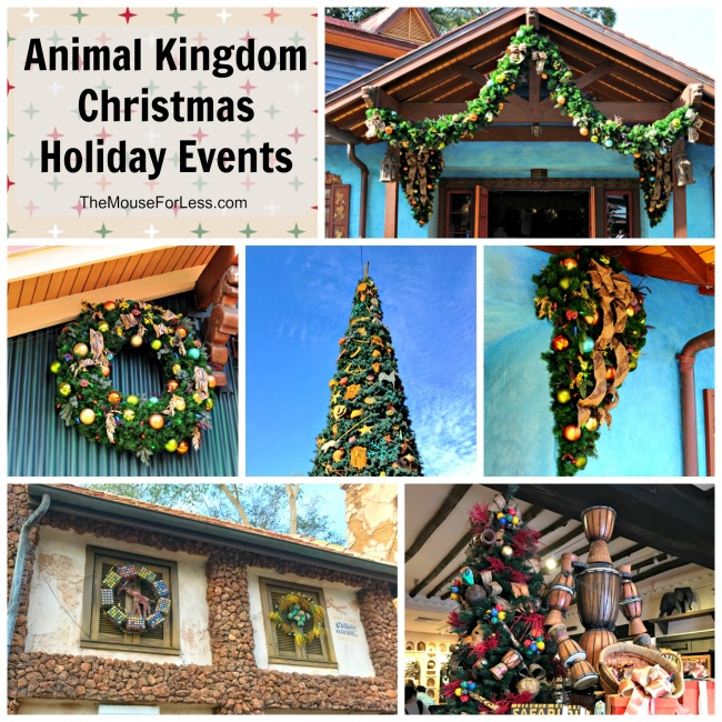 Disney's Animal Kingdom Christmas