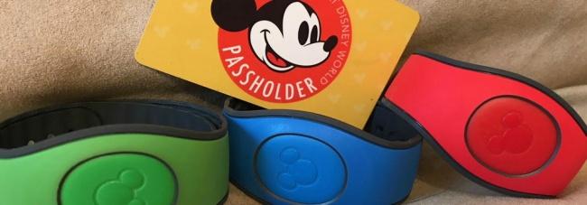 Walt Disney World Annual Pass Info & Benefits