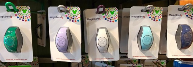 Customizing Your MagicBands