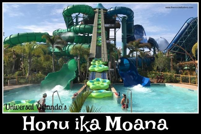 Honu ika Moana
