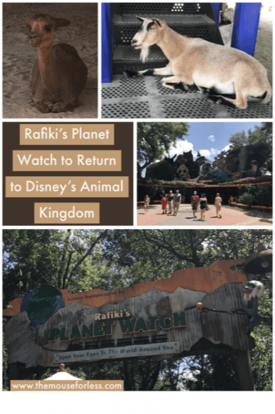 Rafiki's Planet Watch Will Return to Disney's Animal Kingdom