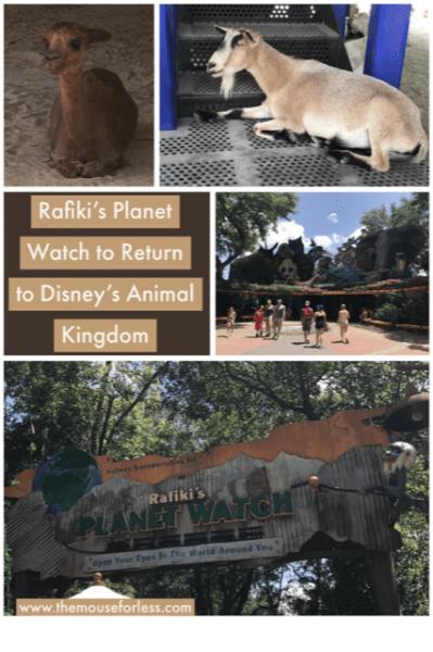 Rafiki's Planet Watch Will Return to Disney's Animal Kingdom