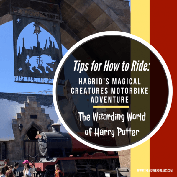 Tips to ride Hagrid's Magical Creatures Motorbike Adventure