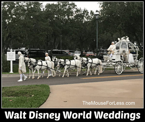 weddings at Walt Disney World