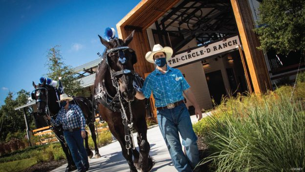 Tri-Circle D Ranch